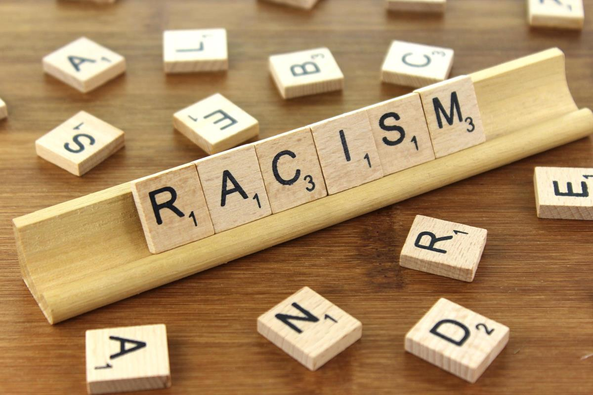 Talking About Racism: Conversational Learning